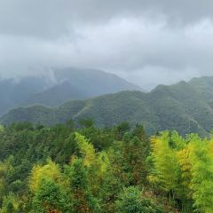 Zhubucun User Photo