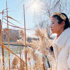 Wudao Park (South Gate) User Photo