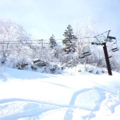 류오 스키 파크 여행 사진