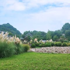 Suanshan Garden User Photo