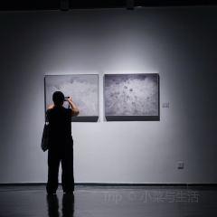 文軒美術館用戶圖片