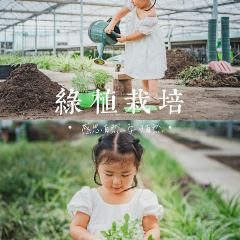 一號農場用戶圖片