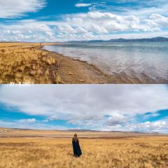 Donggei Cuona Lake User Photo