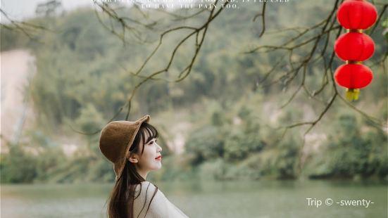 """在广东,有一片由成片成片的竹子组成的翠绿色的""""大海"""",微风拂"""
