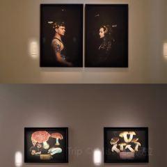 Tauranga Art Gallery User Photo