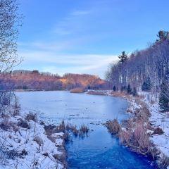 Earl Bales Park User Photo