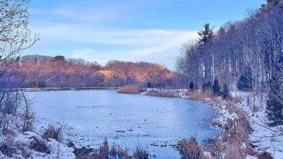 Earl Bales Park
