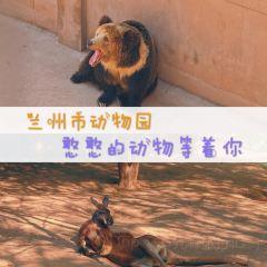 Lanzhoushi Zoo User Photo