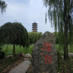 심양삼농박람원 여행 사진