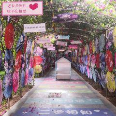 Xiamen Old Courtyard Scenic Spot User Photo
