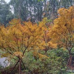 남교공원 여행 사진