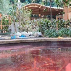 海棠曉月溫泉用戶圖片