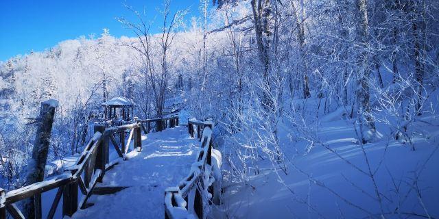 Xuexiang National Forest Park
