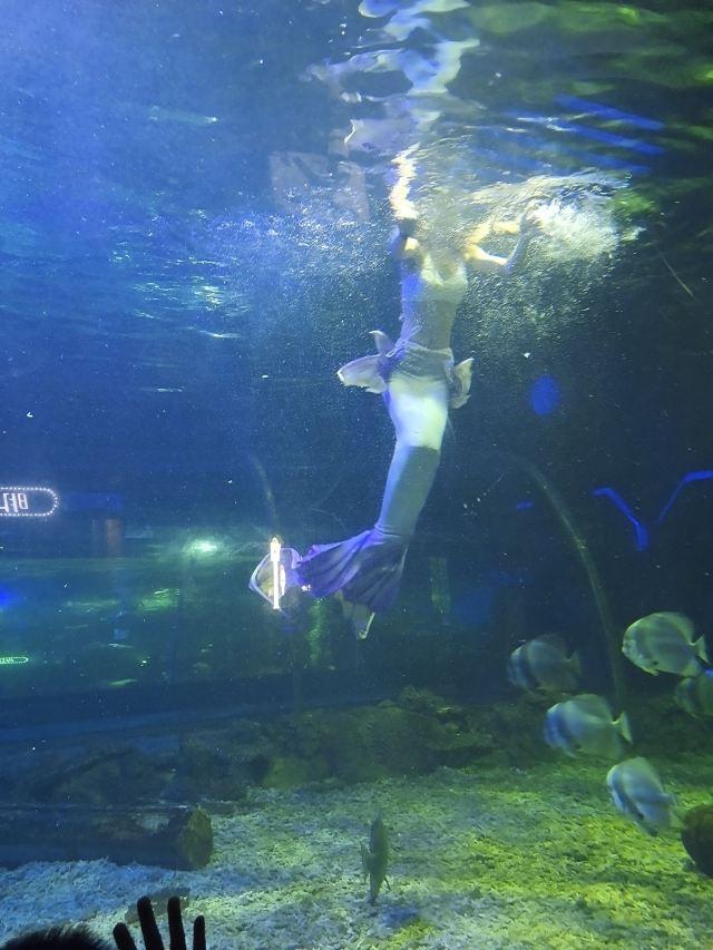 Oceanus Marine Park