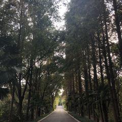 퉁리 습지공원 여행 사진