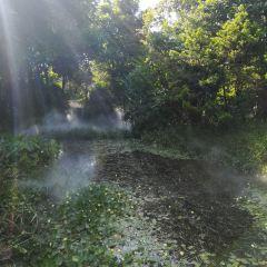 Haizhu Wetland User Photo