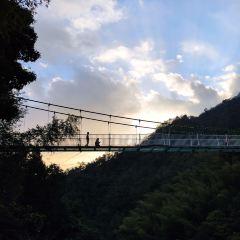 高州仙人洞風景區用戶圖片