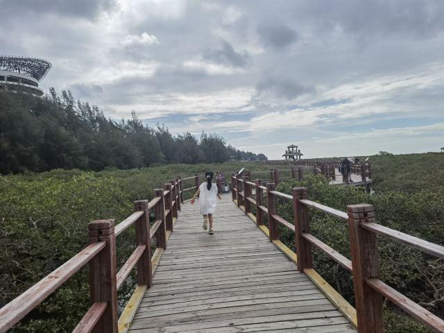 Beihai Golden Bay Mangrove Ecotourism Area