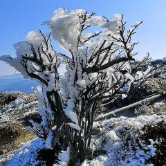 Yunbing Mountain Tourism Sceneic Area User Photo