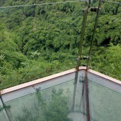 Bamboo Canyon Scenic Area (Jinji Valley) User Photo
