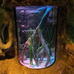 瀋陽海洋探索中心用戶圖片