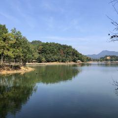 천도호 용천만 여행 사진