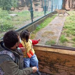 Changsha Ecological Zoo User Photo
