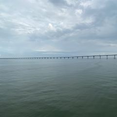 港珠澳大橋張用戶圖片