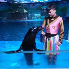 Nanning Rongcheng Jidi Haiyang World User Photo