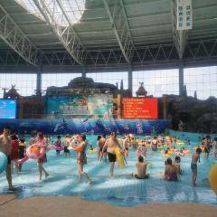 天樂城水世界用戶圖片