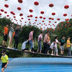 潯龍河櫻花谷用戶圖片