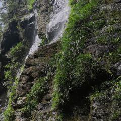 鴛鴦溪用戶圖片