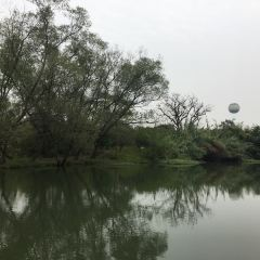 Xixi National Wetland Park User Photo