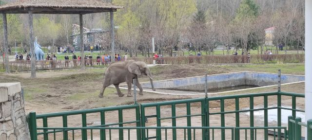 Beifang Forest Zoo