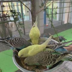 濟南動物園用戶圖片