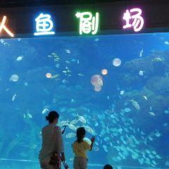 Handan Ocean Park User Photo