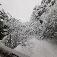 Jinding Cableway User Photo