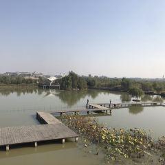 雙龍湖觀鳥園用戶圖片