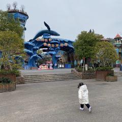 Hangzhou Changqiao Polar Ocean Park User Photo