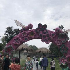 紫薇都市田園用戶圖片