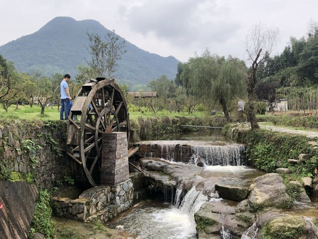 Zhang Guying Village