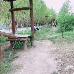China Kongqueyuan (Northeast Gate 1) User Photo