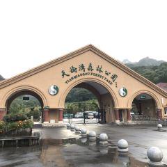 Kuandian Tianqiaogou National Forest Park 여행 사진