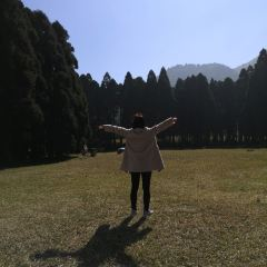 Darong Mountain Forest Park User Photo