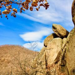 三道關國家森林公園用戶圖片