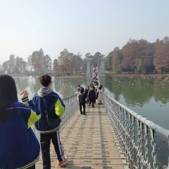 둥후 관광지구 여행 사진