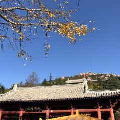 츠산 관광단지 여행 사진