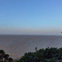 Hailing Island National Wetland Park of Mangrove Forest User Photo