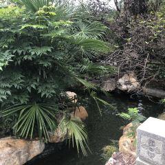 碧桂園溫泉用戶圖片