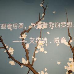 梵古星空藝術館(成都春熙路旗艦店)用戶圖片